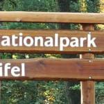 Parc-national-de-l-039-Eifel
